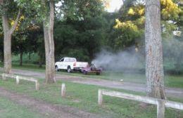 Guerra a los mosquitos.